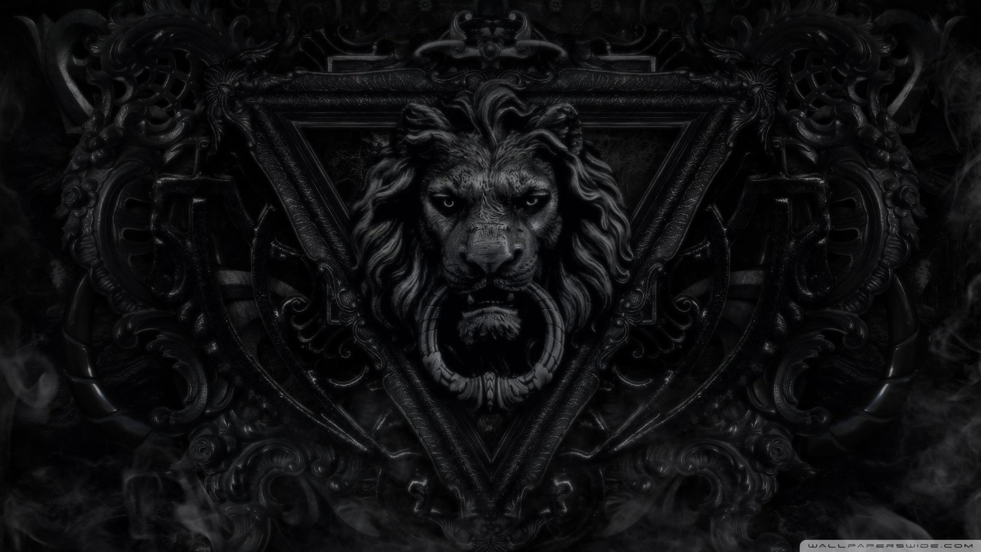 Hd wallpaper lion - Hd 16 9