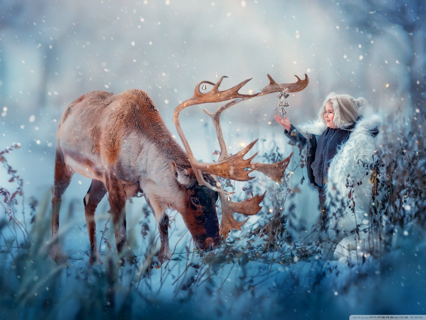 Winter Holidays HD desktop wallpaper : Widescreen : High ...