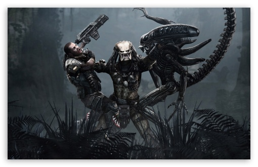 alien vs predator wallpaper. 4 Aliens vs Predator wallpaper