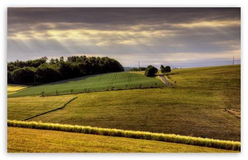 Countryside Field HD wallpaper for Wide 16:10 Widescreen WHXGA WQXGA WUXGA WXGA ;