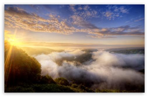 Morning Mist Over The Forest HD wallpaper for Wide 16:10 Widescreen WHXGA WQXGA WUXGA WXGA ;