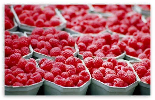 Raspberries - Food wallpaper for Standard 4:3 5:4 Fullscreen UXGA XGA SVGA QSXGA SXGA ; Wide 16:10 5:3 Widescreen WHXGA WQXGA WUXGA WXGA WGA ; HD 16:9 High Definition WQHD QWXGA 1080p 900p 720p QHD nHD ; Other 3:2 DVGA HVGA HQVGA devices ( Apple PowerBook G4 iPhone 4 3G 3GS iPod Touch ) ; Mobile VGA WVGA iPhone iPad PSP Phone - VGA QVGA Smartphone ( PocketPC GPS iPod Zune BlackBerry HTC Samsung LG Nokia Eten Asus ) WVGA WQVGA Smartphone ( HTC Samsung Sony Ericsson LG Vertu MIO ) HVGA Smartphone ( Apple iPhone iPod BlackBerry HTC Samsung Nokia ) Sony PSP Zune HD Zen ; Tablet 2 Android ; Dual 4:3 5:4 16:10 5:3 16:9 UXGA XGA SVGA QSXGA SXGA WHXGA WQXGA WUXGA WXGA WGA WQHD QWXGA 1080p 900p 720p QHD nHD ;