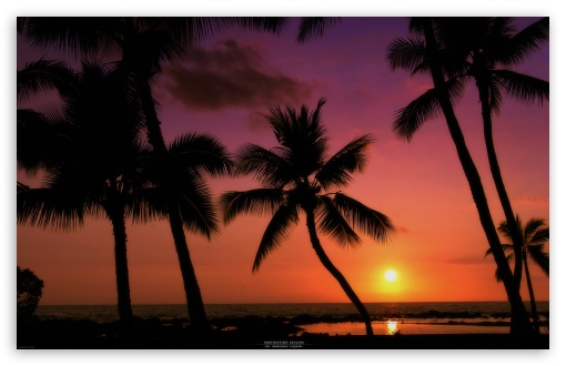 tropical beach sunset wallpaper. Tropical Sunset wallpaper for