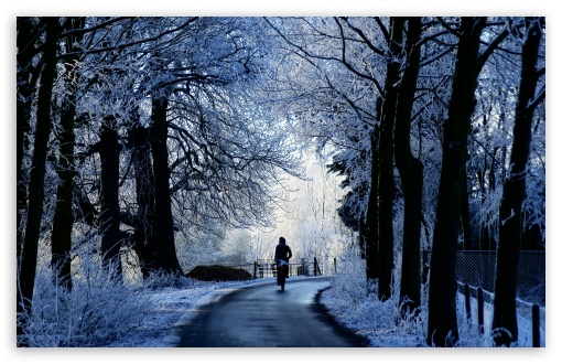 Winter Road Scene HD desktop wallpaper : Widescreen : High Definition ...
